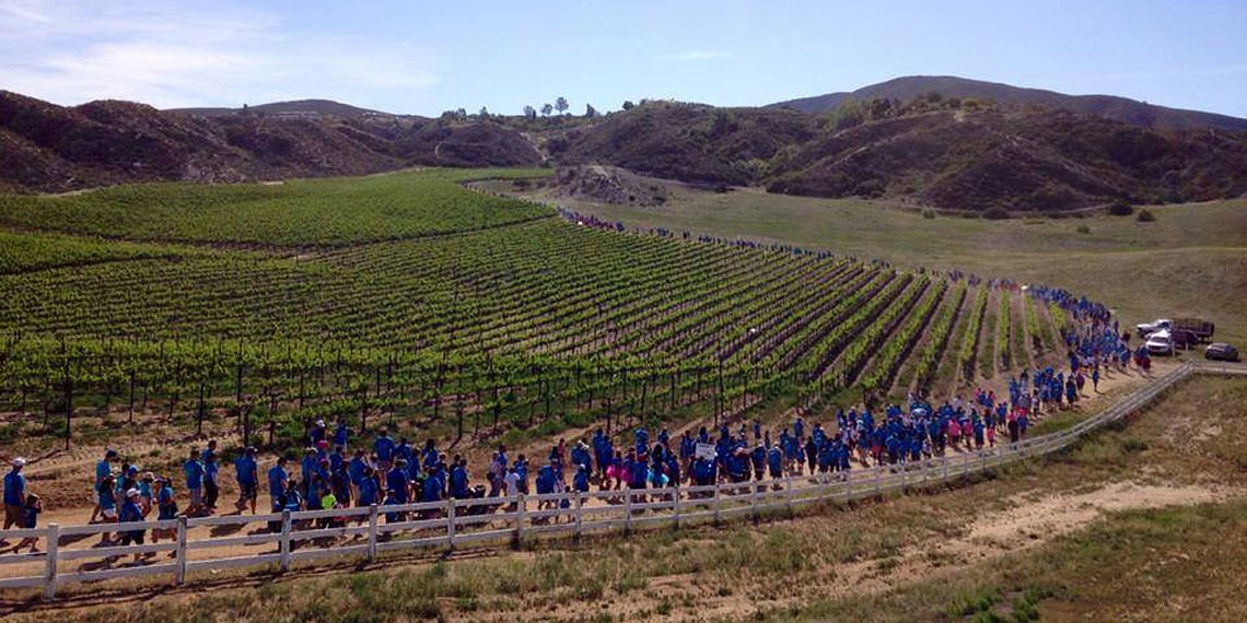 Walk in the Vines Benefits Our Nicholas Foundation