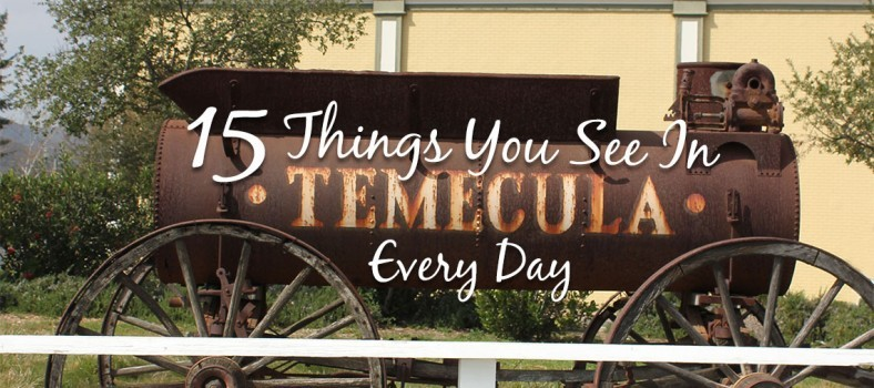 15 Things You See in Temecula Every Day